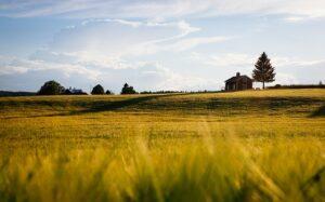 Landwirtschaft mit Haus Pixabay